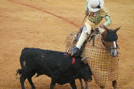Madrid bullfight picadillos